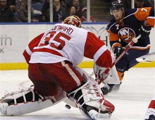 Red Wings Islanders Hockey