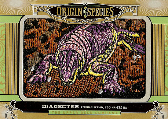 2014-Goodwin-Champions-Origins-Of-Species-Diadectes
