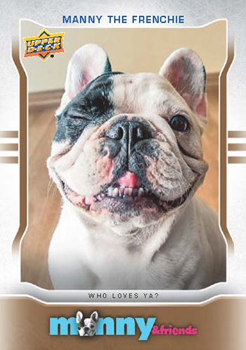 2015-Upper-Deck-Manny-the-Frenchie-Trading-Card-National-Sports-Collectors-Convention-5